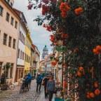 Co zobaczyć w Saksonii? Miśnia – królestwo porcelany, zamek zwany trendseterem i nie tylko.