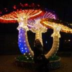 """Park Iluminacji """"Podróż do Krainy Wyobraźni"""" – świąteczny Zamek Topacz"""